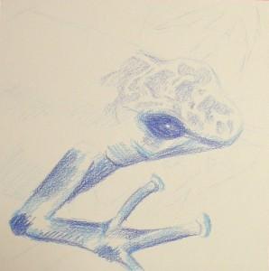 Blue frog - wip1