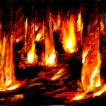 Burning Wood with high contrast