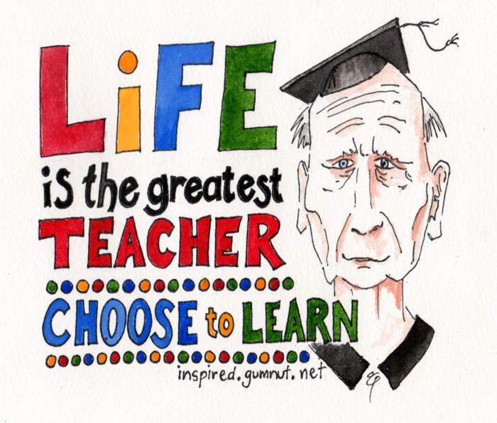 Life is the greatest teacher