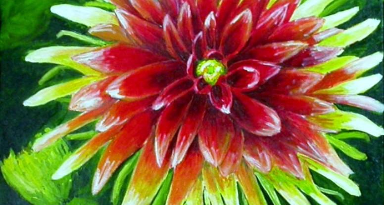 Dahlia by Liz Powley
