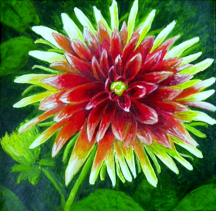 Dahlia by Liz Powley
