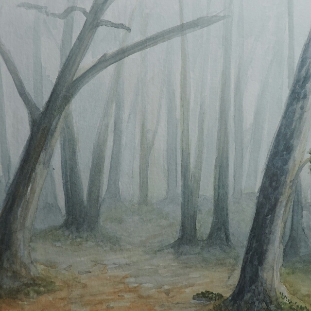 An attempt at a foggy forest