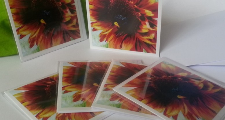 Sunflower I cards