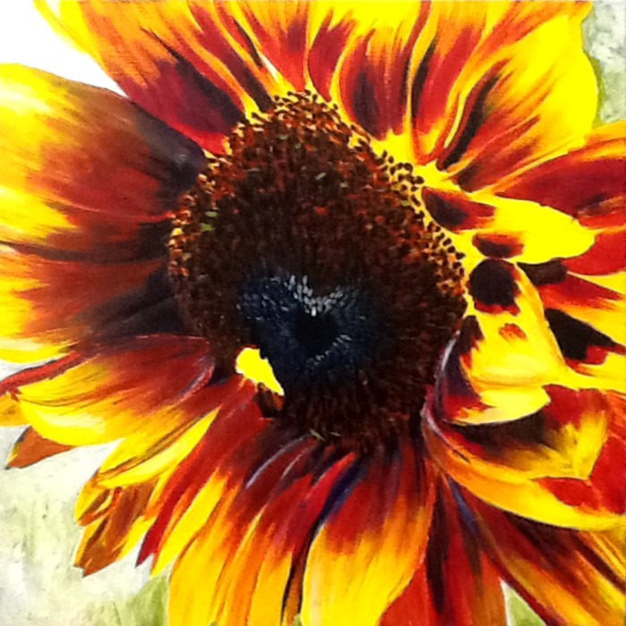 Sunflower I wip-3