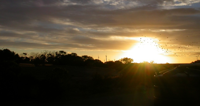 Sunset, Edithburgh, South Australia