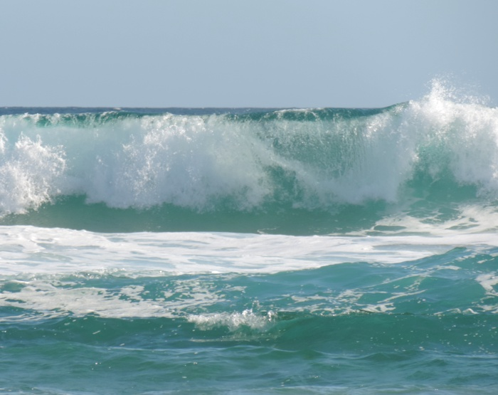 waitpinga wave