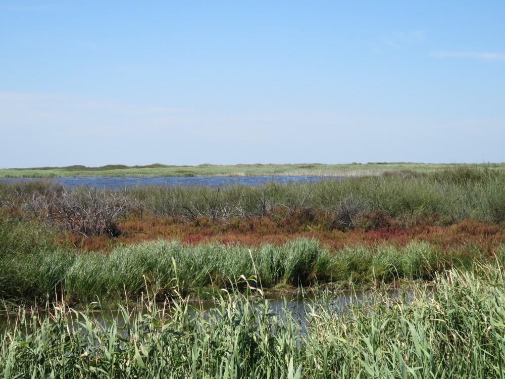 Tolderol Game Reserve
